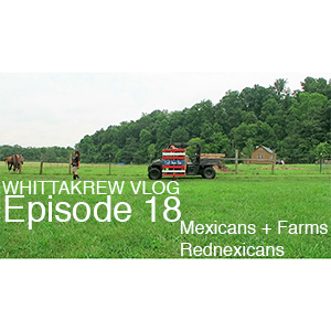 VLOG Episode 18 – Mexicans + Farms = Rednexicans